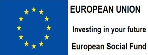European Social Fund Flag